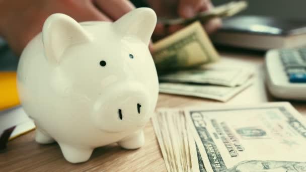 Koncept úspory. Prasátko a ruce počítání peněz. Domácí rozpočet.