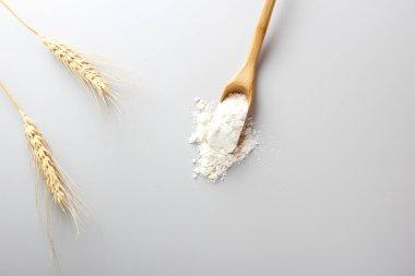 flour spoon spatula on a light background