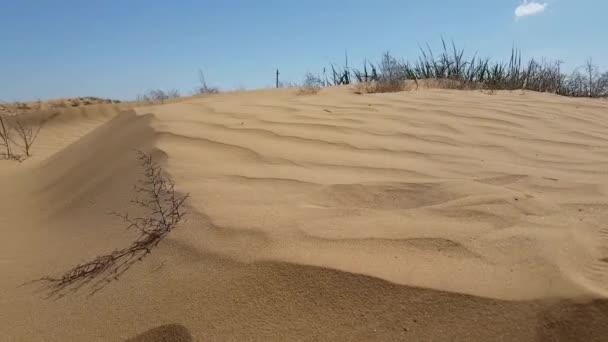 Nézd a homokdűnék felület