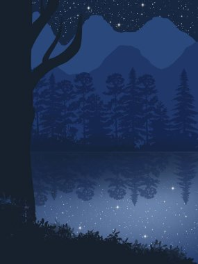 Fog over the lake and night forest