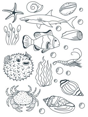 Coloring book. Coloring page. Underwater world. Fish. Shell