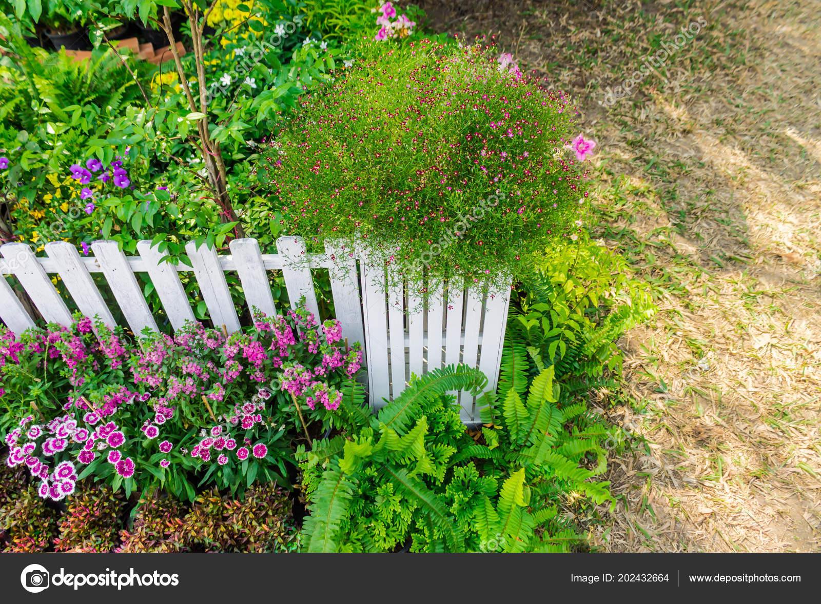 White Wood Fence Flower Decoration Cozy Home Garden Summer U2014 Stock Photo