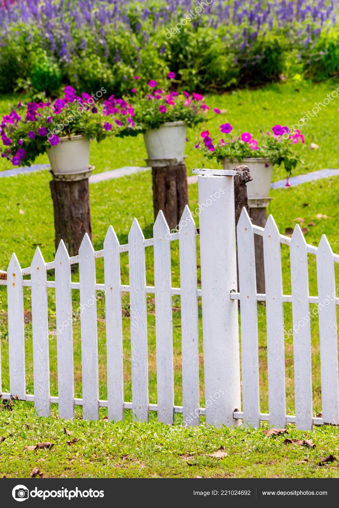 Fleurs Decoration Pot Fleur Dans Beaute Cosy Fleur Jardin Estival
