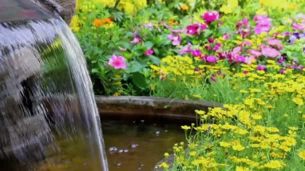 Filmmaterial Wasserfall fließt und lebendige Blumen Topfdekoration in gemütlichen heimischen Blumengarten im Sommer.