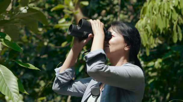 Nő keres keresztül távcsövet a fák, élvezi a kilátás az ázsiai dzsungelben. Trekking át a dzsungelen.