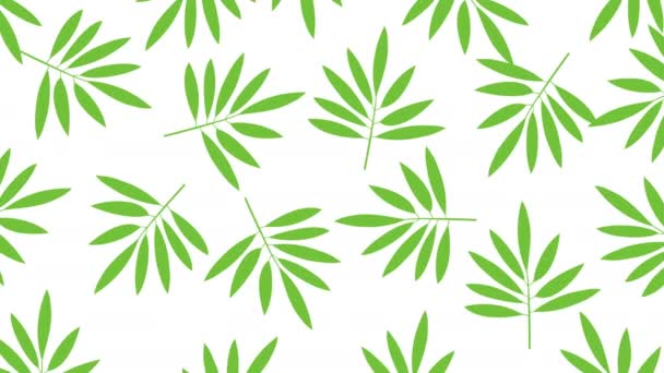 Minimal Motion Design Animation Tropical Leaves Rotate Color Background Abstract Stock Video C Infocusvideo 290735376 Lovepik provides 61000+ tropical leaves photos in hd resolution that updates everyday, you can free download for both personal and commerical use. minimal motion design animation tropical leaves rotate at color background abstract graphics in trendy colors and style seamless looping animation