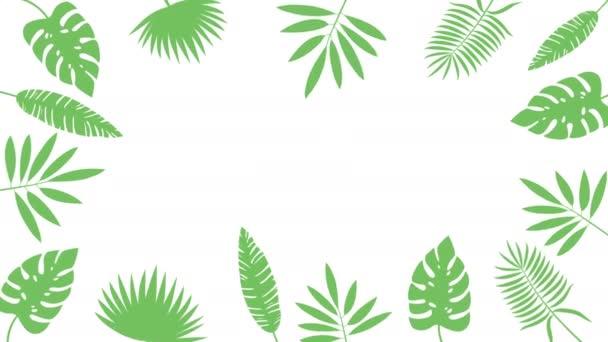 minimale Bewegungsdesign-Animation. bunte tropische Dschungel Hintergrund Rahmen von Palmenblättern. abstrakte Grafiken in trendigen Farben und Stil. nahtlose Looping-Animation.