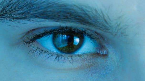 Zavřít makro záběr muže lidské hnědé oko nemrští. Stylizované modré chladné odstínu barvy.
