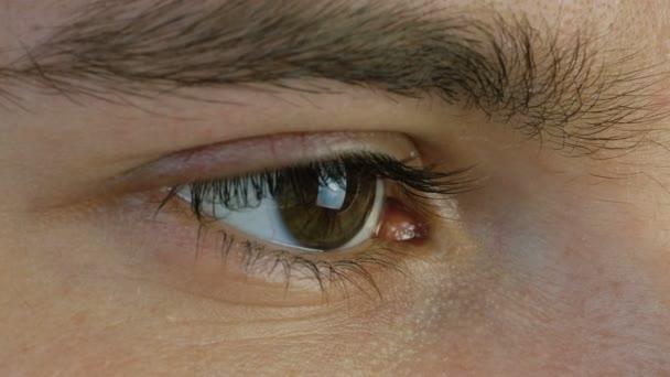 Zavřít makro záběr muže lidské hnědé oko nemrkají