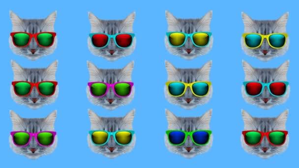 Katzenstil wackeln beweglichen Farbhintergrund. Abstrakte Grafiken in trendigen Farben und Stil. Nahtlose Bewegungsgrafik-Animation in Schleifen.