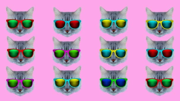 Cat with glasses style wiggle moving color background. Abstract graphics in trendy colors and style. Seamless looped motion graphic animation.