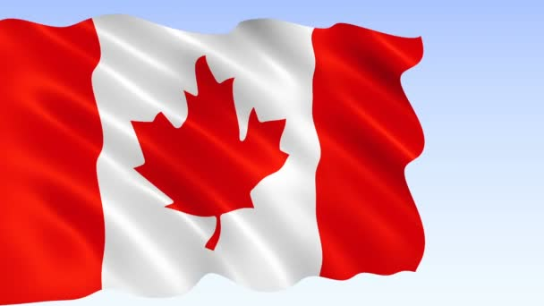 Canadian flag waving in the wind. Realistic flag background. Looped animation background.