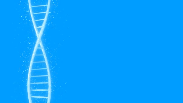 Abstract DNA 3D animation on blue background. Hologram blue glowing rotating DNA double helix. Science and medicine concepts. Seamless loopable background.