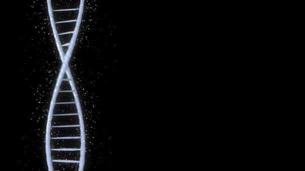 Abstract DNA 3D animation on black background. Hologram blue glowing rotating DNA double helix. Science and medicine concepts. Seamless loopable background.
