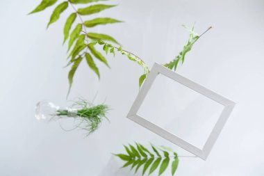 Beautiful flying green leaves background with white frame.