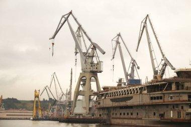 Cranes in the estuary of Bilbao