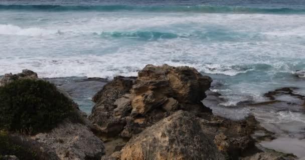 Coastline at Cape Willoughby, Kangaroo Island, Australia 4K