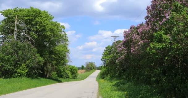 Venkovská silnice a lilaks za krásný den 4k