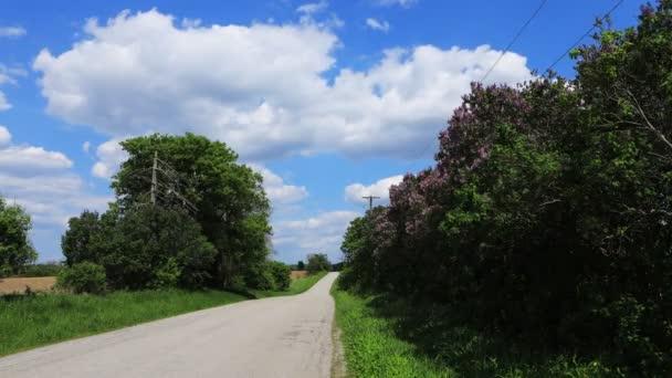 Silnice a lilaky v časové osy za krásný den 4k