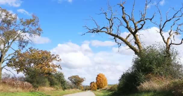 Country pruh v brilantní podzimní barvě 4K