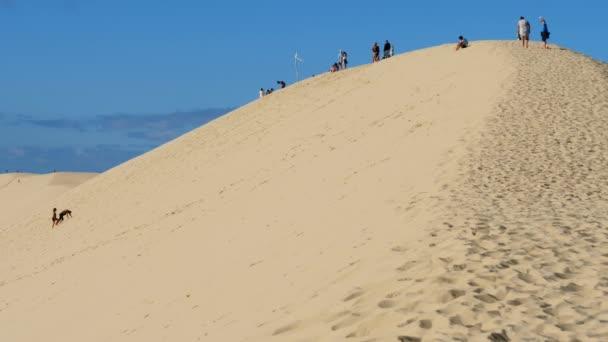 Dune du Pilat, Gironde,Nouvelle Aquitaine, France. People climbing the dune