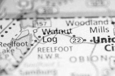 Walnut Log. Tennessee. USA