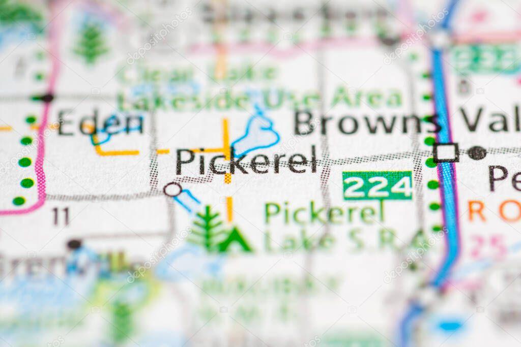 Pickerel