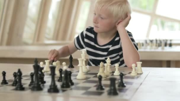 The child plays chess. The boy plays with white pieces