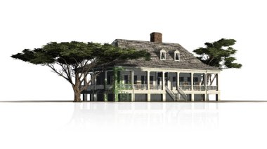 Plantation Houses with umbrella pine trees with reflections - isolated on white background