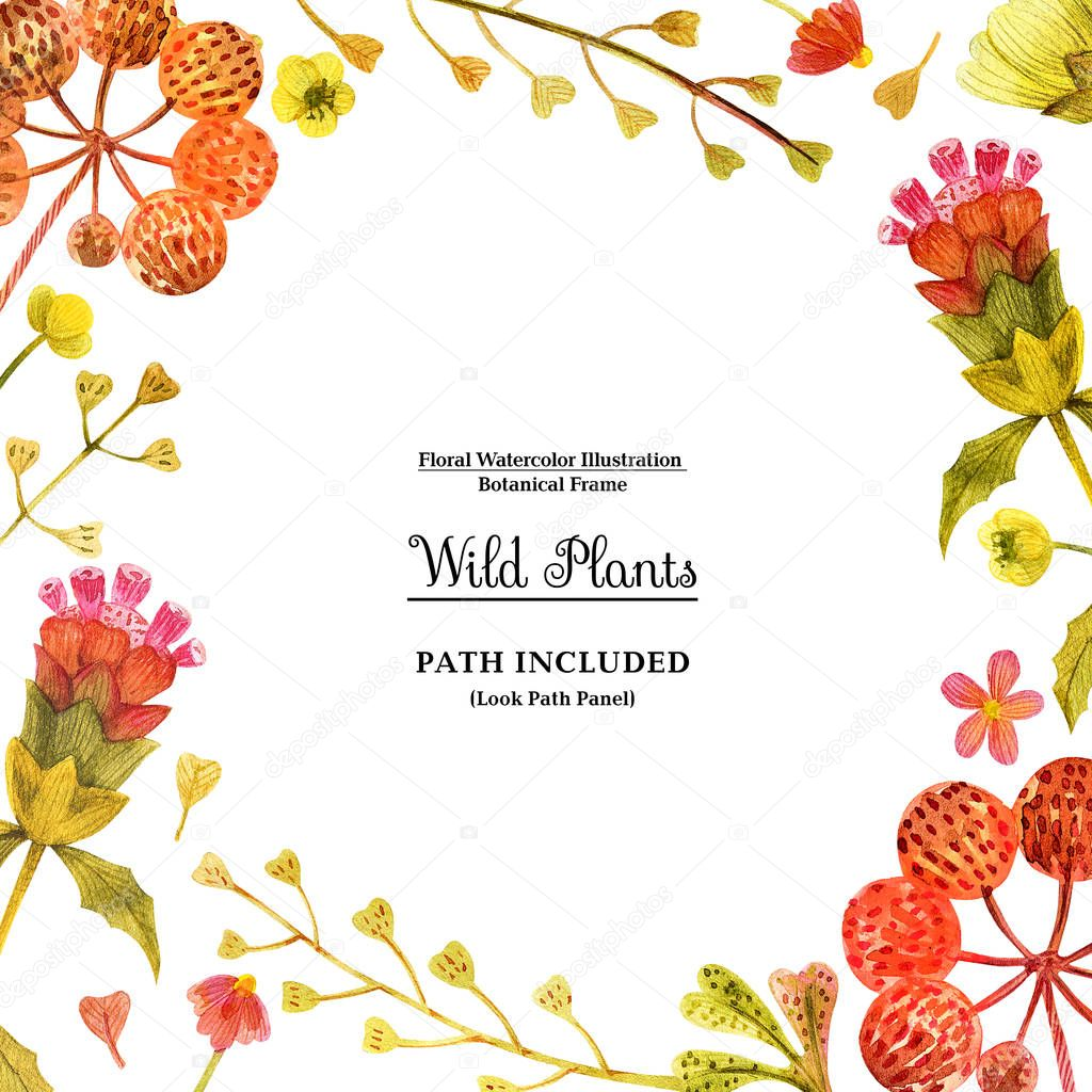 Red wild plants square frame for decoration