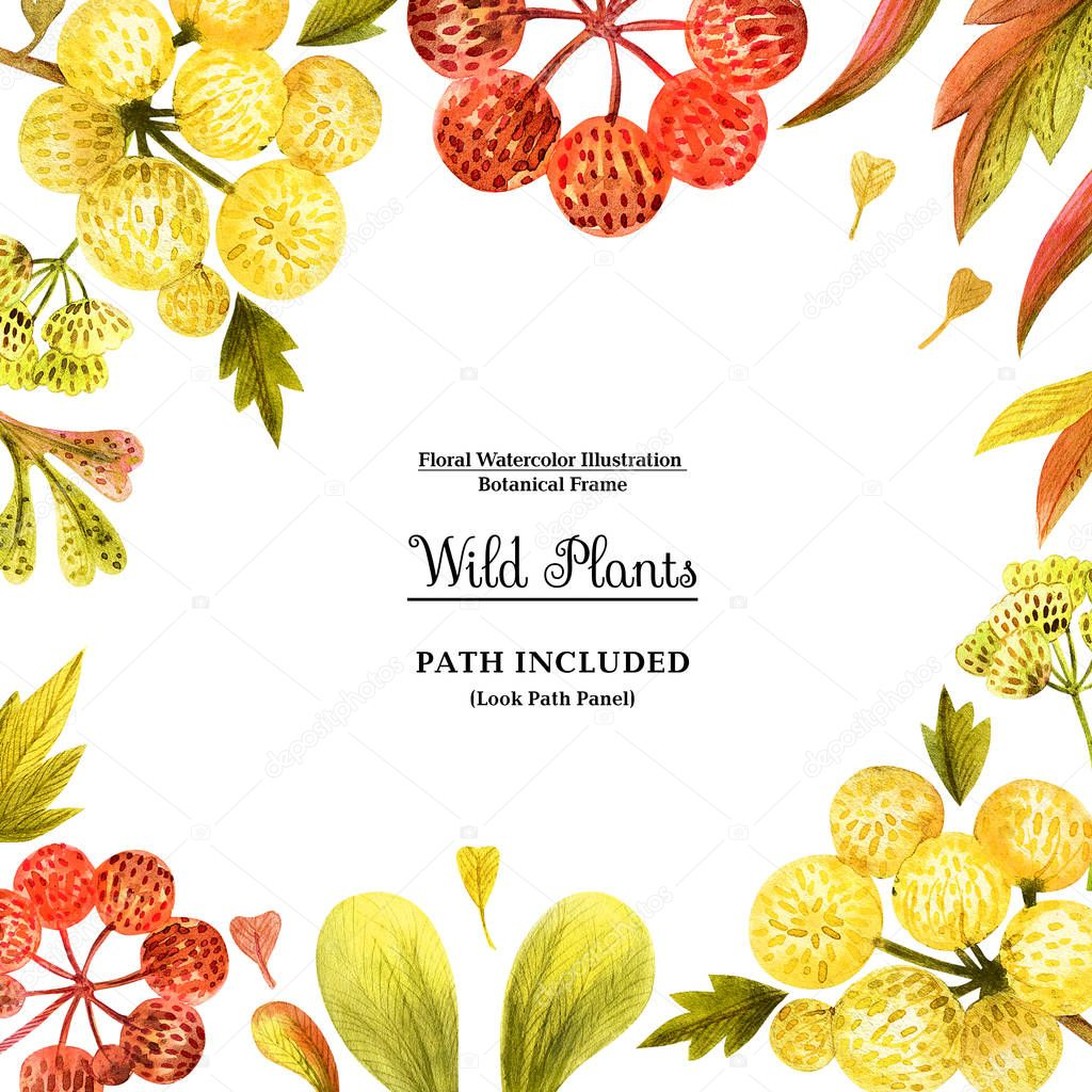 Yellow wild plants square frame for decoration
