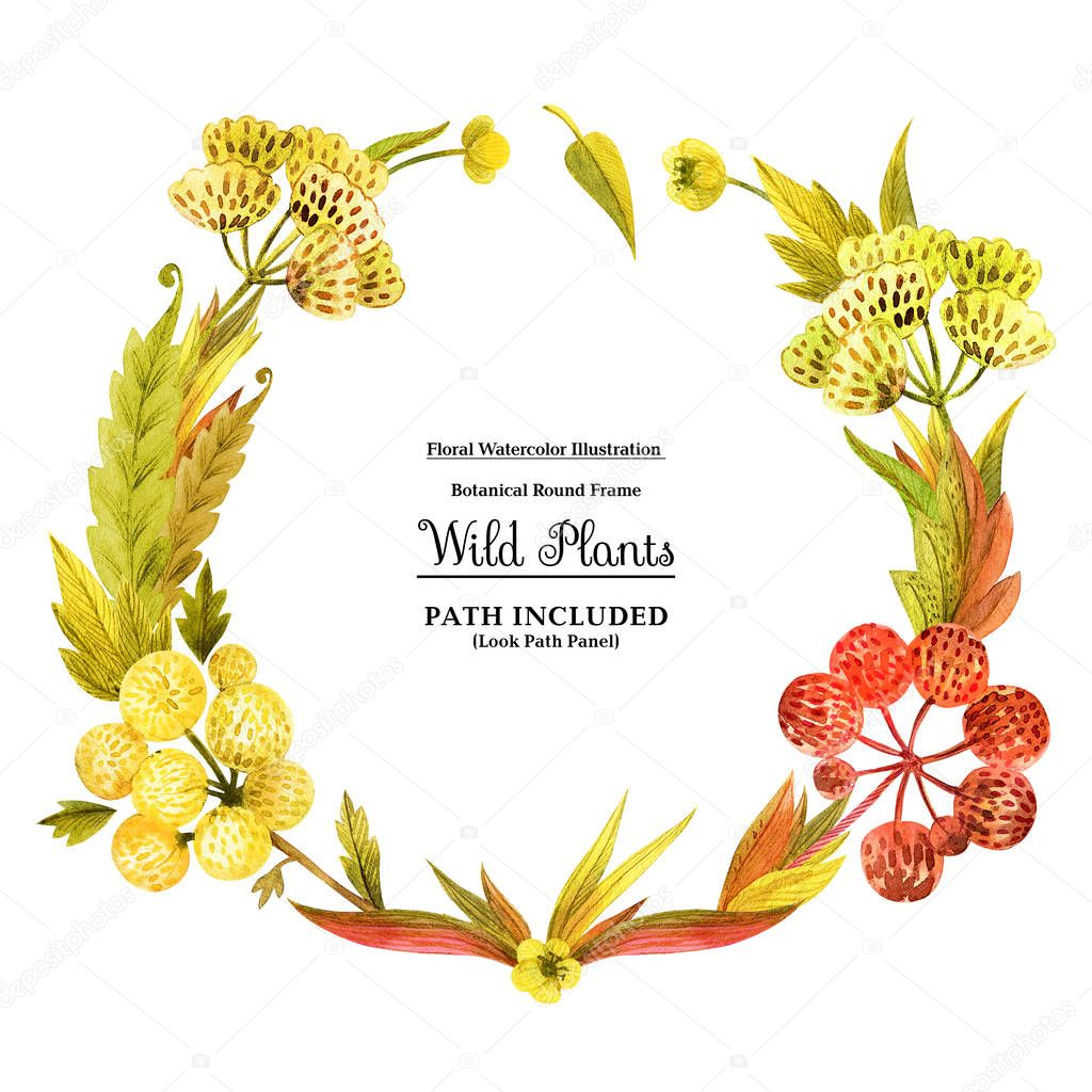 Yellow wild plants round frame for decoration