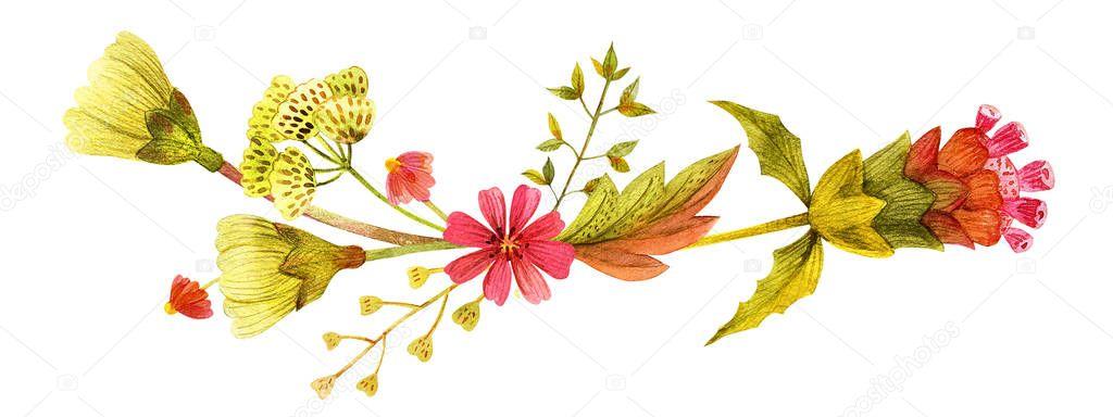 Yellow wild plants vignette
