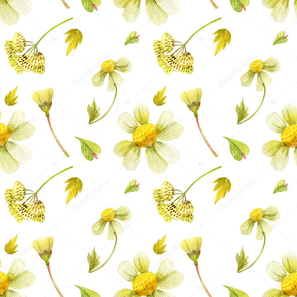 Wild plants seamless pattern