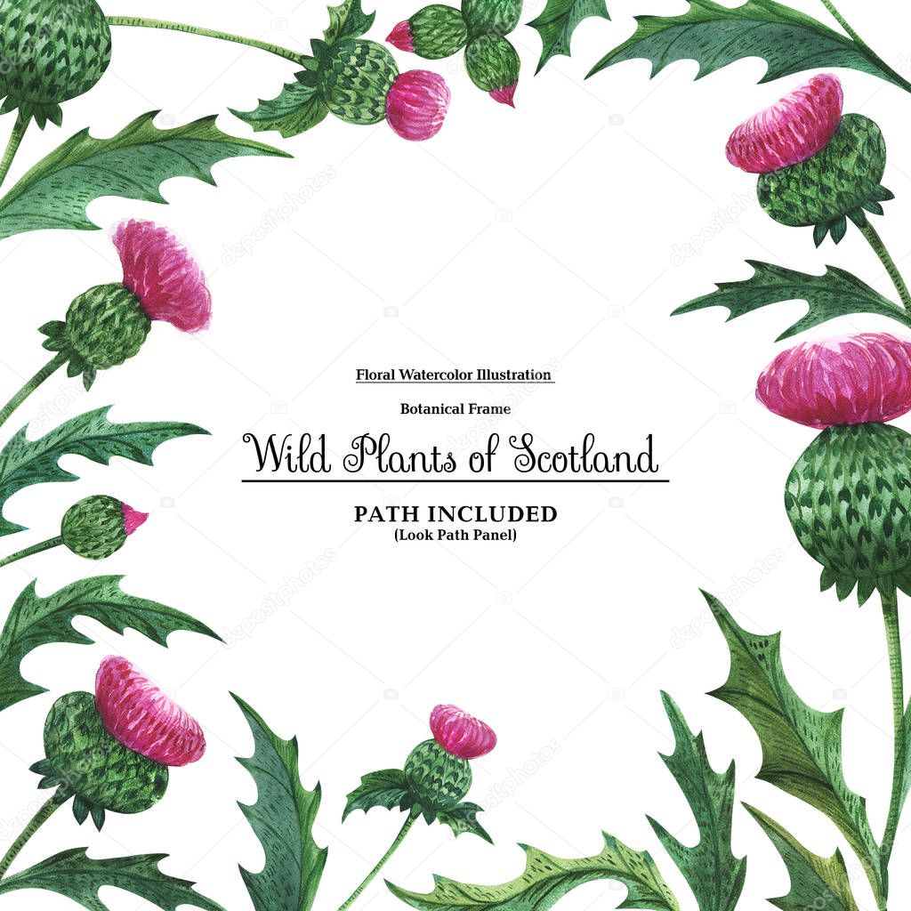 Square border from thistles. Floral symbol of Scotland