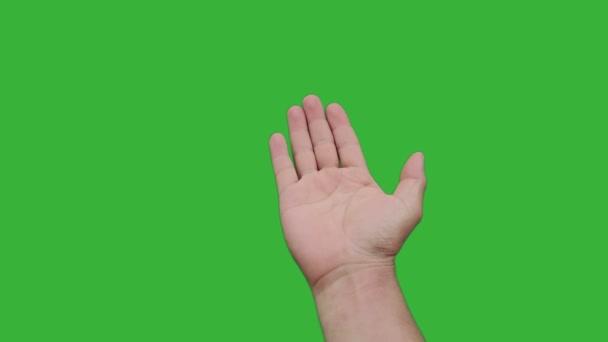 Záběry v reálném čase ruku asijského muže mávající zvou k připojení izolované na zeleném pozadí chroma klíče obrazovky. Koncept uvítání.