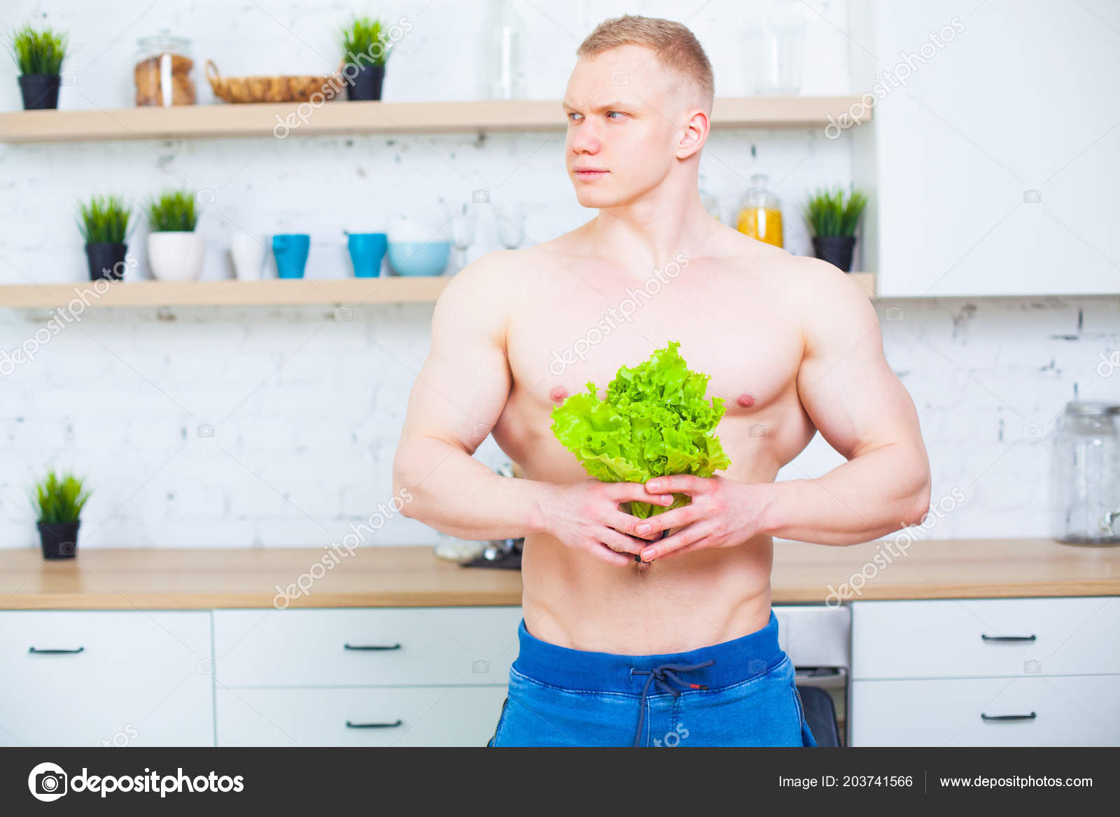 The naked kitchen download