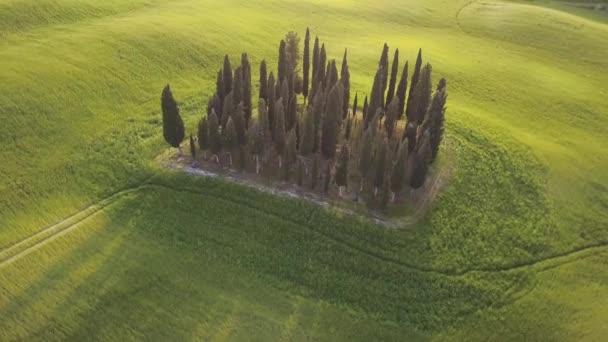 Letecké záběry slavných cypřišů v Toskánsku, Itálie