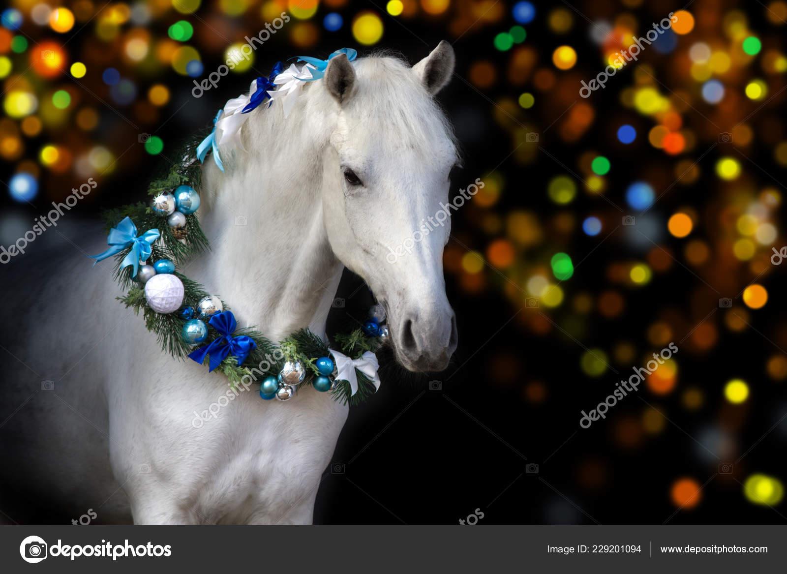 Portrait White Horse Christmas Decorations Black Background Lights Bokeh Stock Photo C Callipso Art 229201094