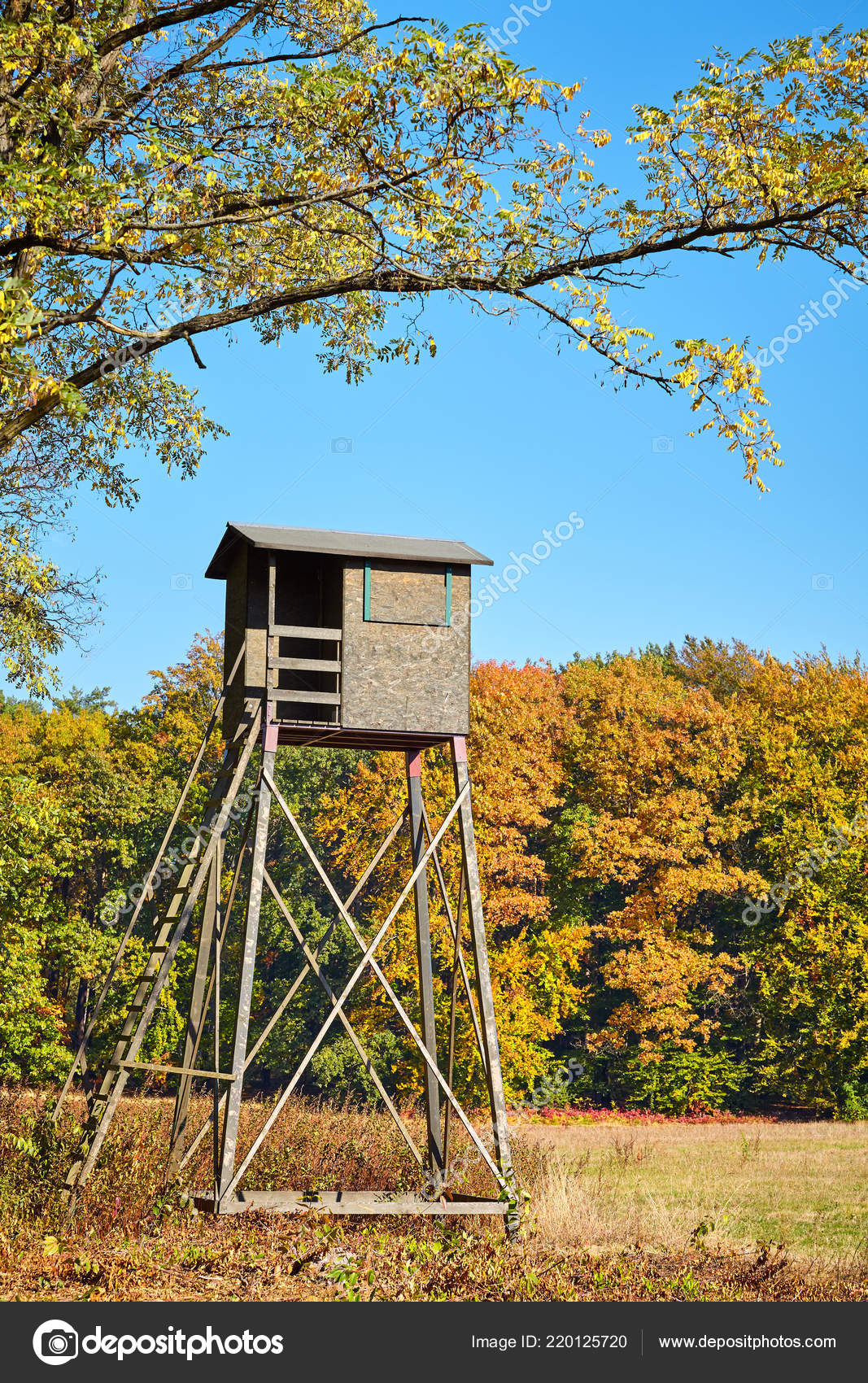 Pictures : hunting blinds | Wooden Elevated Deer Hunting