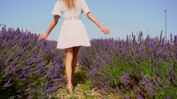 Lifestyle with a young blonde Caucasian woman strolling through a purple lavender field on a summer afternoon in a white dress and hat. Following young man walking in a lavender field