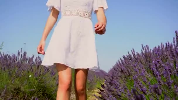Lifestyle with a young blonde Caucasian woman strolling through a purple lavender field on a summer afternoon in a white dress and hat. Enjoying nature in a lavender field with purple flower