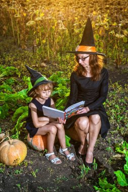 Mom and daughter in costumes of a witch are sitting on pumpkins and reading a book, concept of Halloween. Family is preparing for the holiday Halloween. Halloween background, free space.