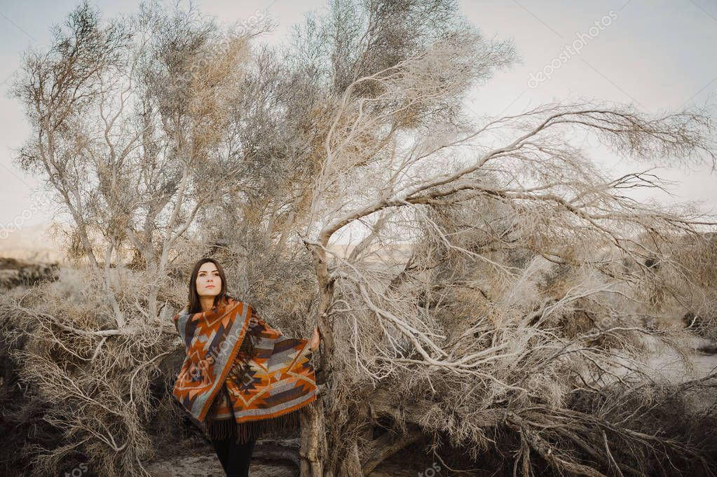 Young beautiful hipster traveler girl in gypsy look in desert nature.  Artistic photo of young hipster traveler girl in gypsy look, in Coachella Valley in a desert valley in Southern California.