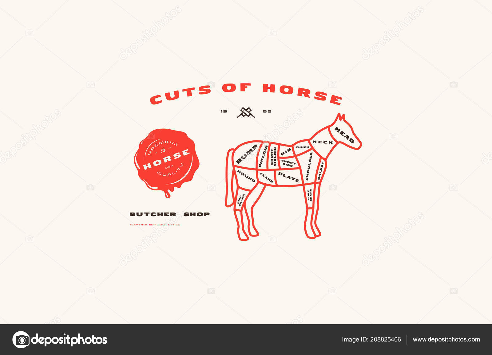 stock vector horse cuts diagram thin line style color print — stock vector