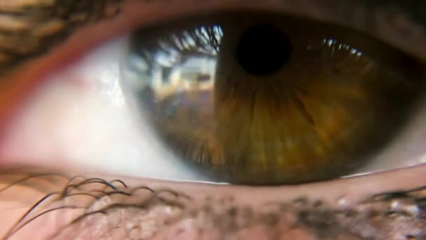 Hnědé barevné Zenske oko zavřít do záběru.