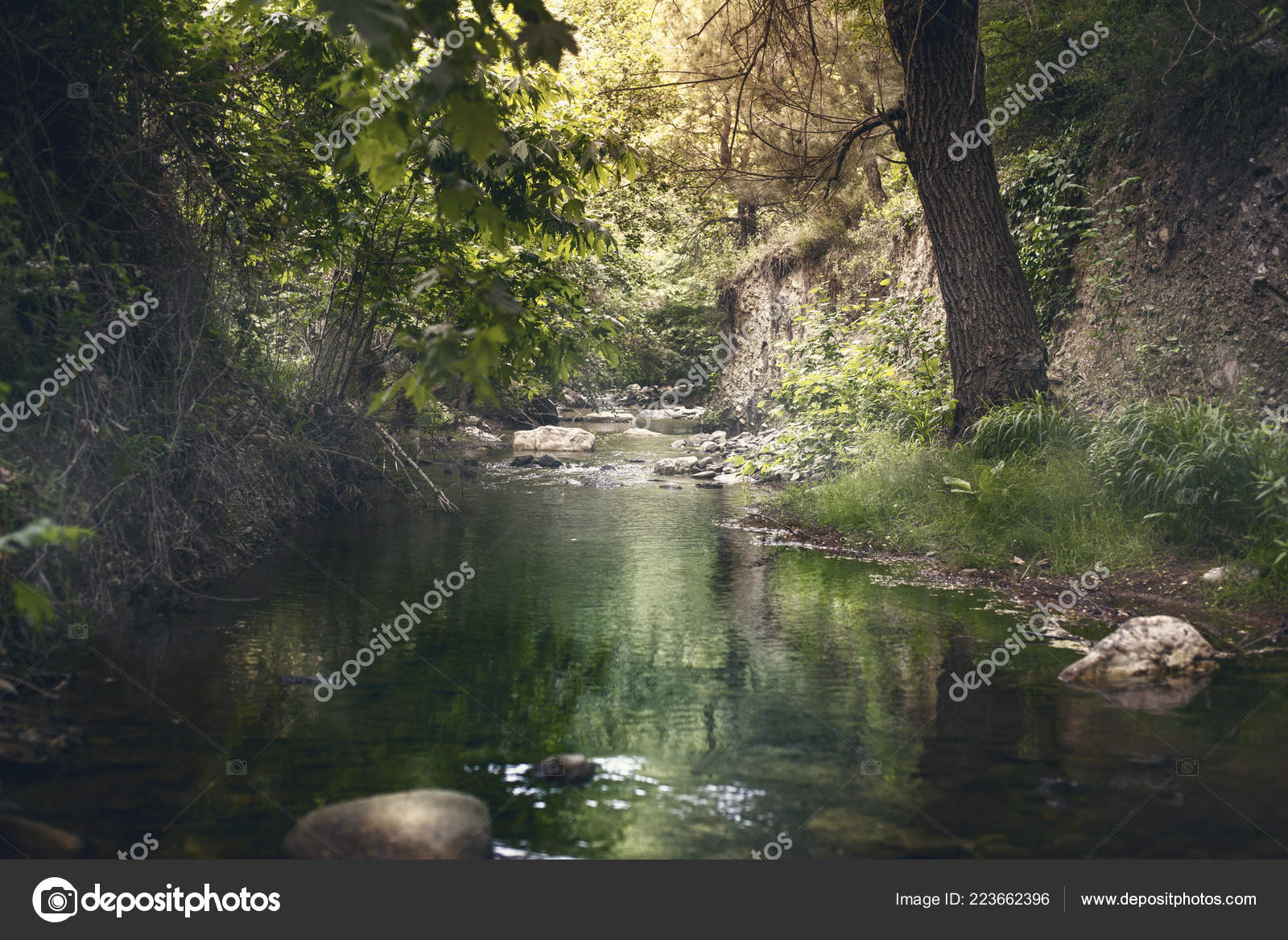 Water Stream Izmir Turkey Kemalpasa Stock Photo C Casarda 223662396