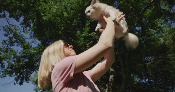 Boldog gyönyörű nő napszemüvegben szórakozik a kis aranyos kutyájával, Chihuahua-val. Lassú mozgás 4k