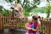 Fotografie Familie Fütterung Giraffen im Zoo. Kinder ernähren sich Giraffen in tropischen Safari Park während der Sommerferien in Singapur. Kinder beobachten Tiere. Mutter und junge Wildtier Frucht verleiht
