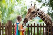 Fotografie Familie Fütterung Giraffen im Zoo. Kinder ernähren sich Giraffen in tropischen Safari Park während der Sommerferien in Singapur. Kinder beobachten Tiere. Kleine Mädchen, das Obst, wildes Tier